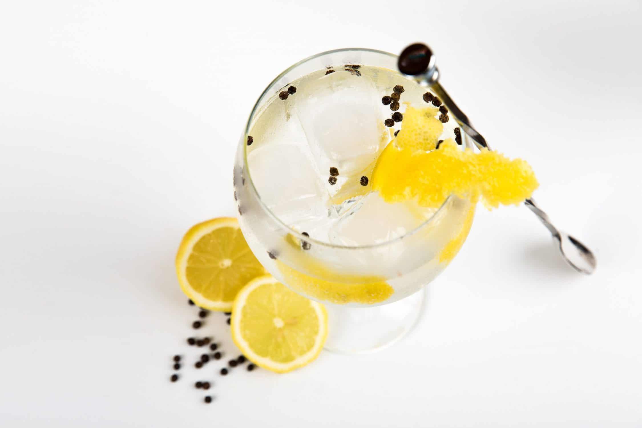 Frozen Gin Tonic